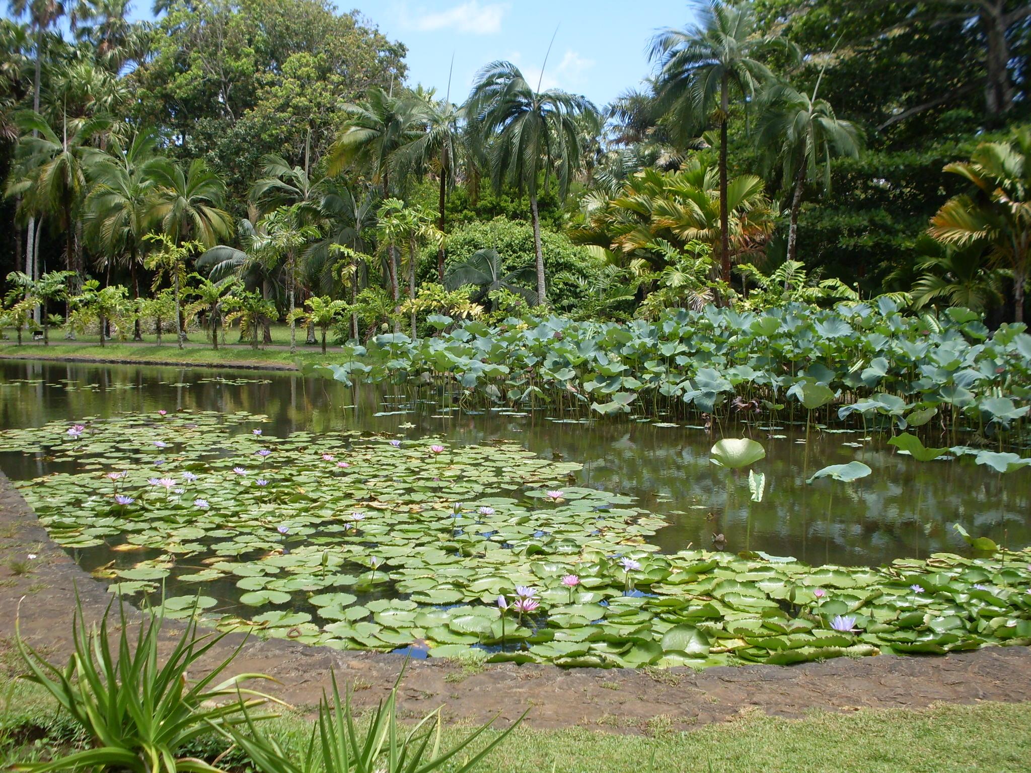Mauritius 188