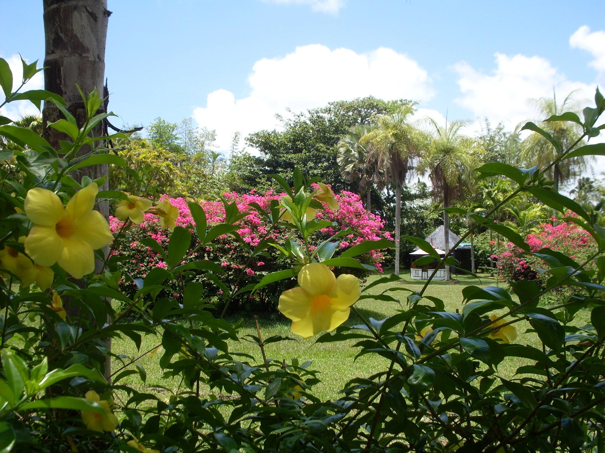 Mauritius 194