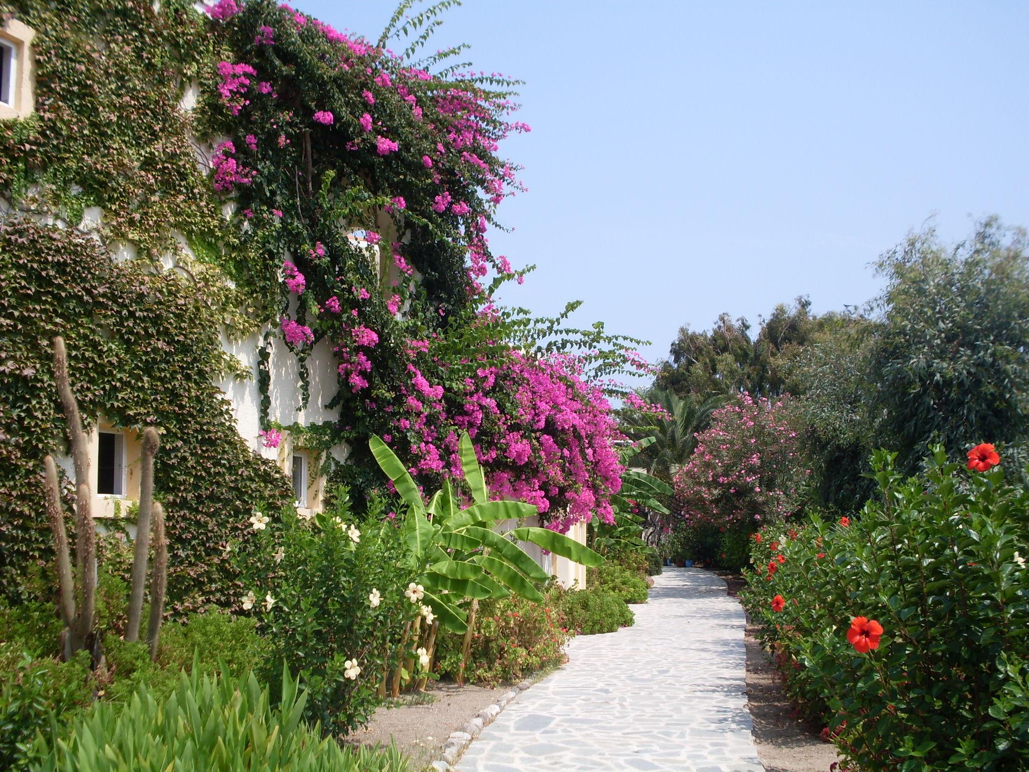 kertészeti tájképek
